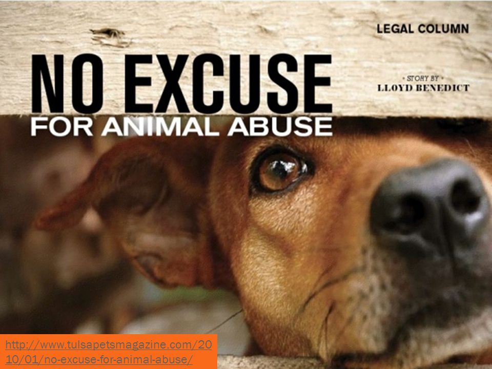 http://www.tulsapetsmagazine.com/20 10/01/no-excuse-for-animal-abuse/