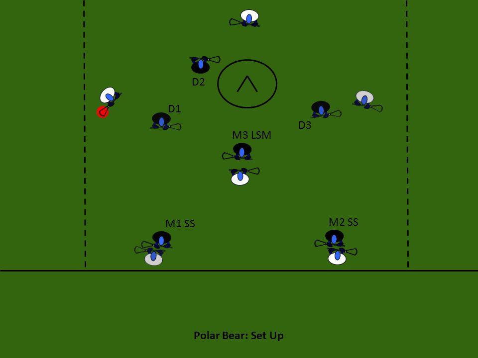 Polar Bear: Set Up M1 SS M2 SS M3 LSM D1 D2 D3