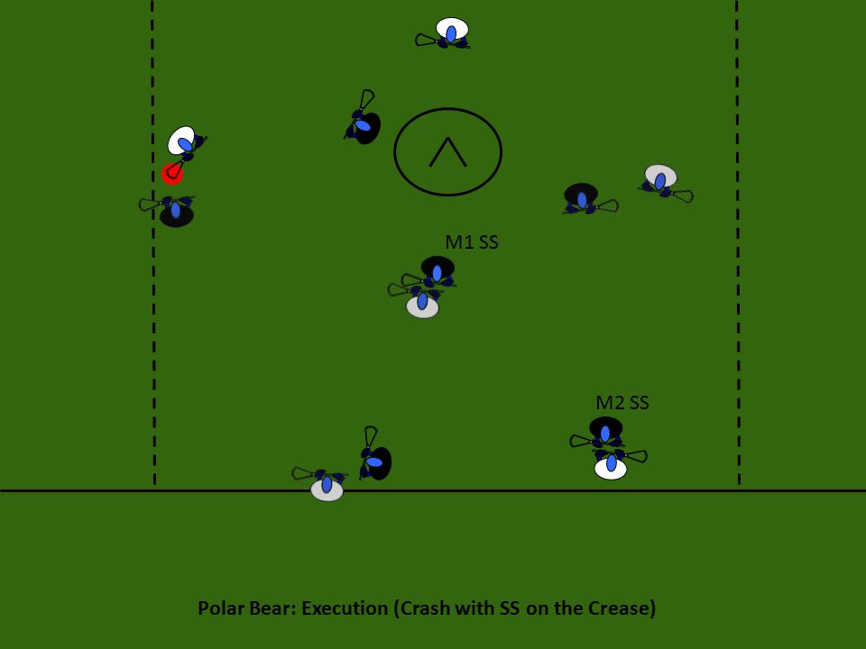 Polar Bear: Execution (Crash with SS on the Crease) M1 SS M2 SS
