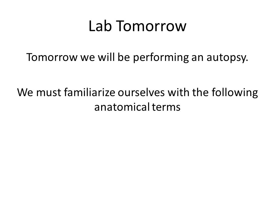 Lab Tomorrow Tomorrow we will be performing an autopsy. We must familiarize ourselves with the following anatomical terms