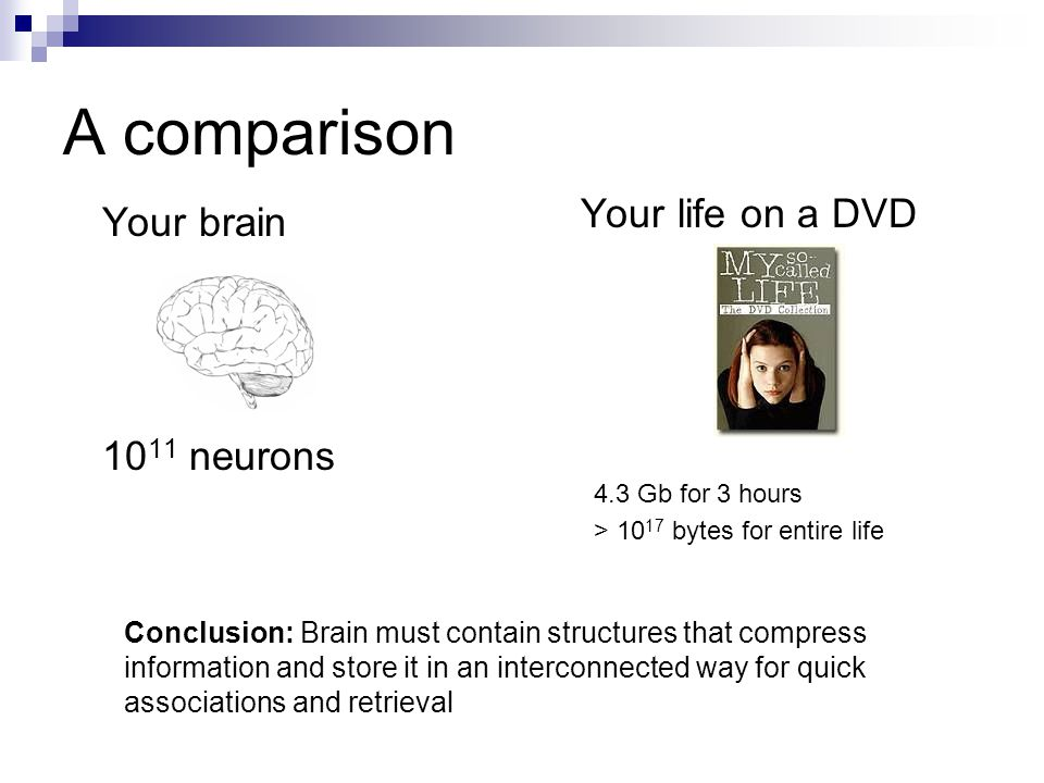 A comparison Your brain 10 11 neurons Your life on a DVD 4.3 Gb for 3 hours > 10 17 bytes for entire life Conclusion: Brain must contain structures th