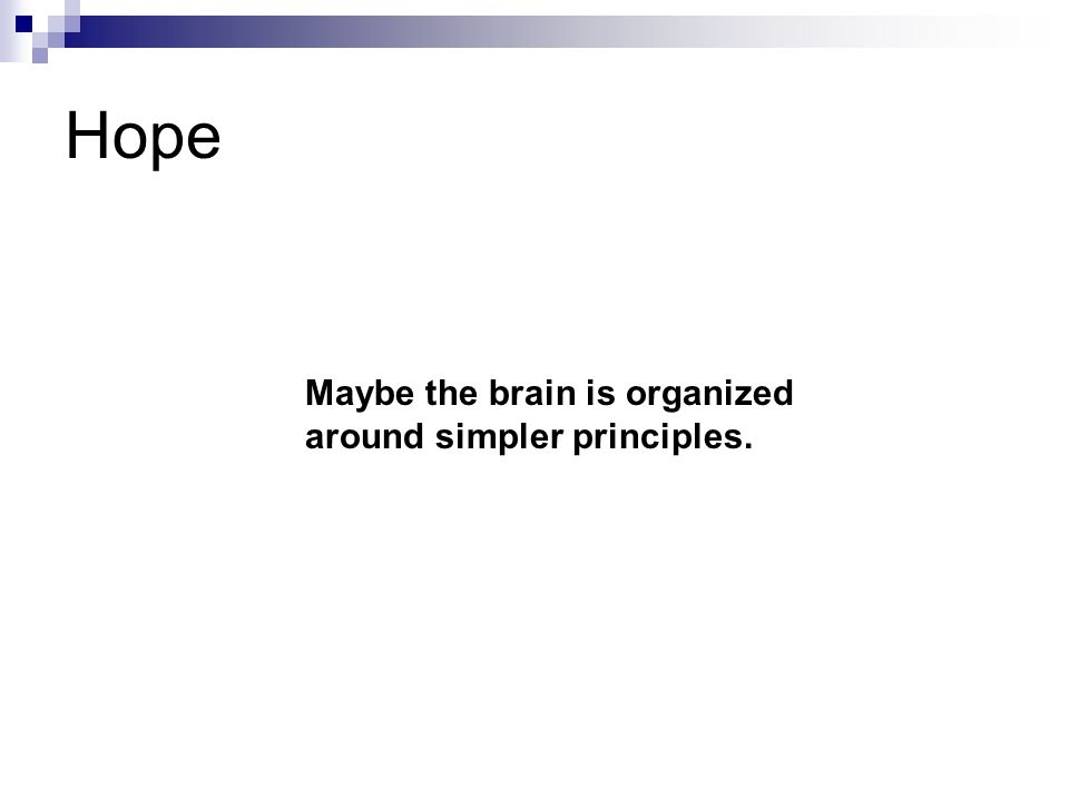 Maybe the brain is organized around simpler principles. Hope