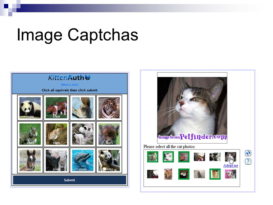 Image Captchas KittenAuth [2006]Asirra [2007]