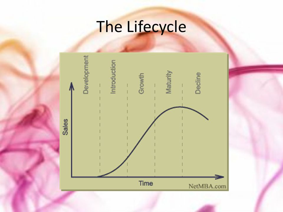 The Lifecycle