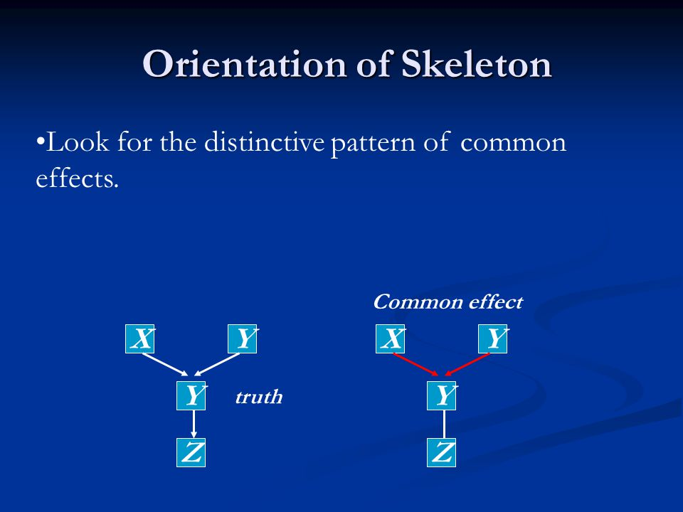 Orientation of Skeleton Orientation of Skeleton Look for the distinctive pattern of common effects.