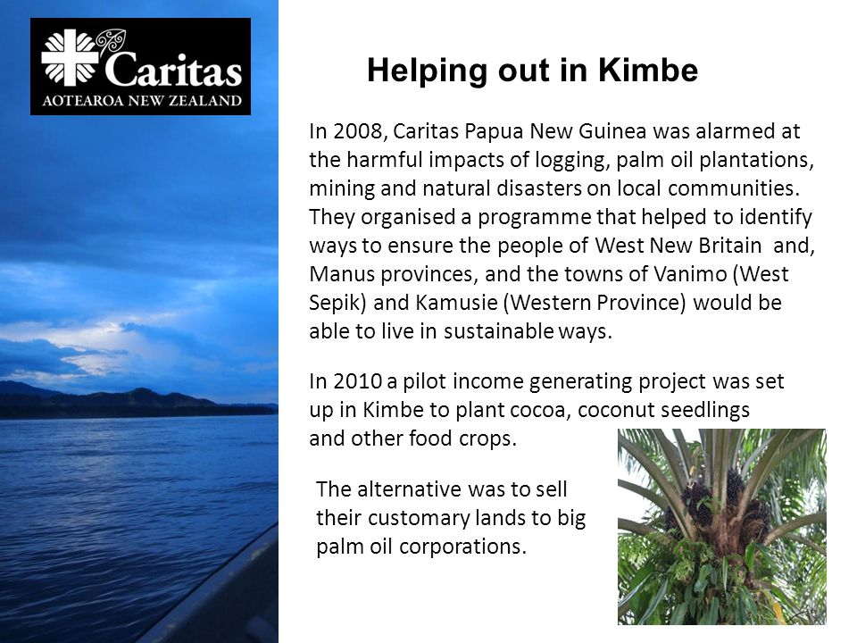In 2008, Caritas Papua New Guinea was alarmed at the harmful impacts of logging, palm oil plantations, mining and natural disasters on local communities.
