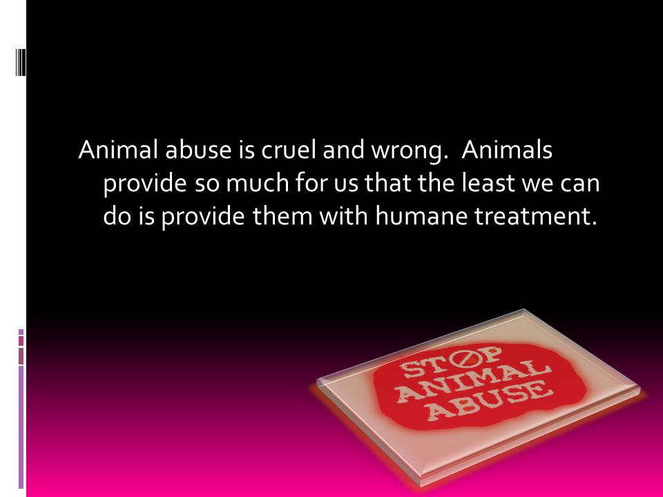 Why we shouldn't abuse animals We use them for…  Food  Clothing  Transport  Protection  Entertainment  Companionship