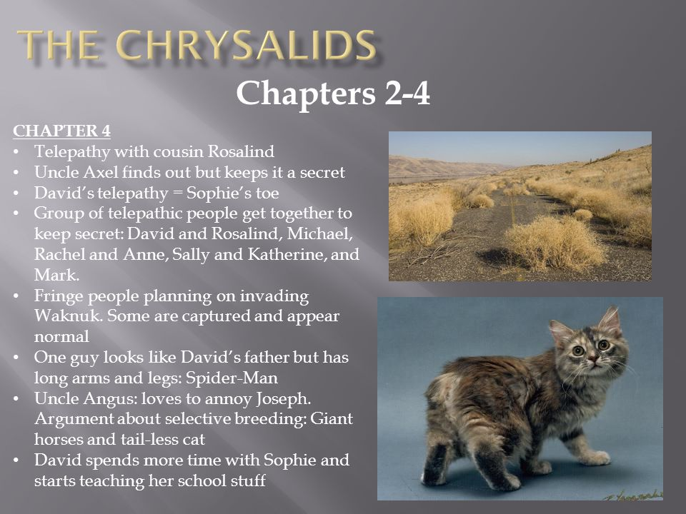 Chapters 2-4 CHAPTER 4 Telepathy with cousin Rosalind Uncle Axel finds out but keeps it a secret David's telepathy = Sophie's toe Group of telepathic