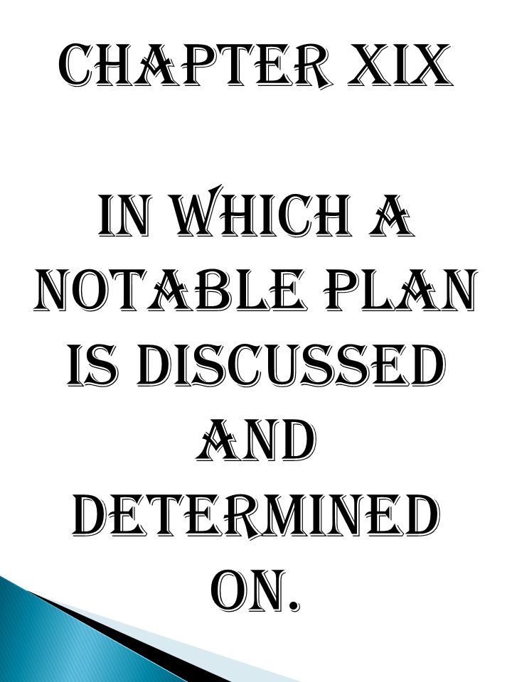 Chapter XIX In which a notable plan is discussed and determined on.