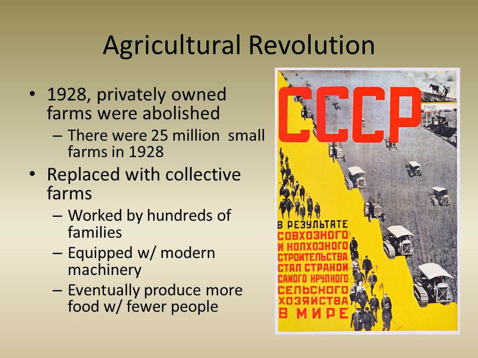 Agricultural Revolution 1928, privately owned farms were abolished – There were 25 million small farms in 1928 Replaced with collective farms – Worked