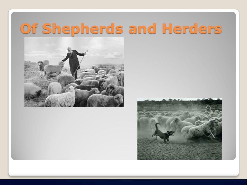 Of Shepherds and Herders