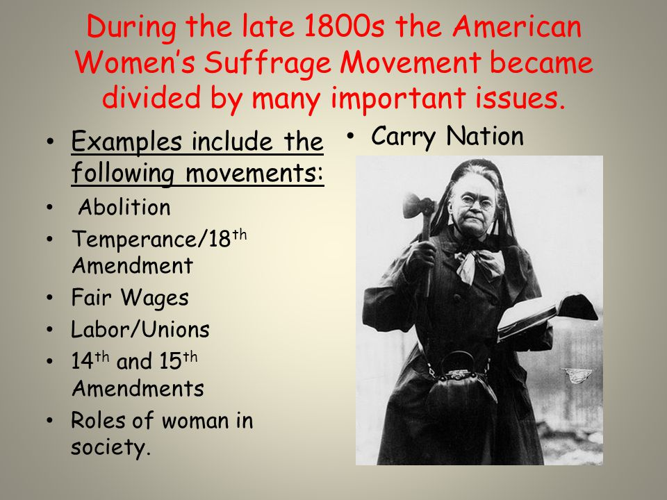 Women's Suffrage Movement was divided between state and federal movements.