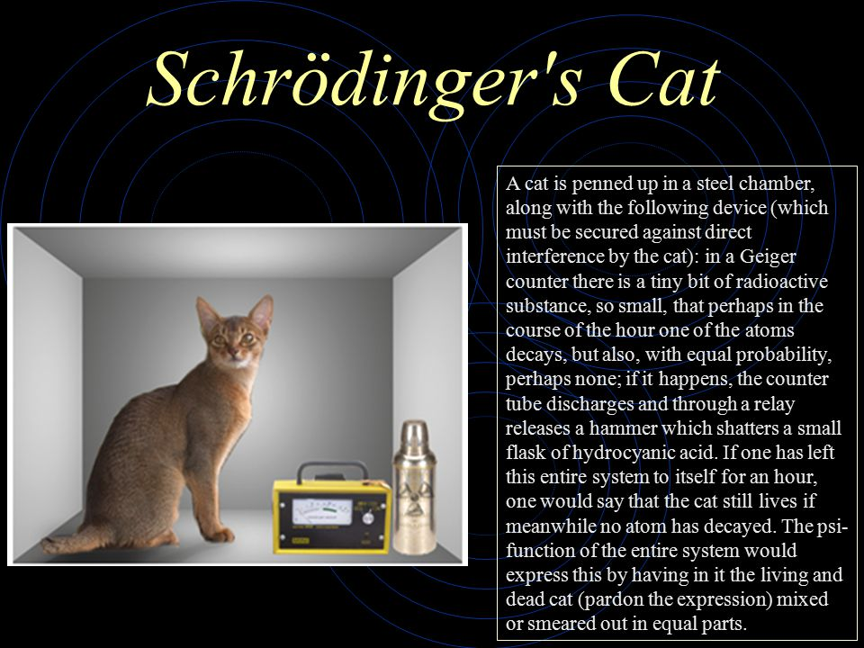 Schrödinger s Cat A cat is penned up in a steel chamber, along with the following device (which must be secured against direct interference by the cat): in a Geiger counter there is a tiny bit of radioactive substance, so small, that perhaps in the course of the hour one of the atoms decays, but also, with equal probability, perhaps none; if it happens, the counter tube discharges and through a relay releases a hammer which shatters a small flask of hydrocyanic acid.