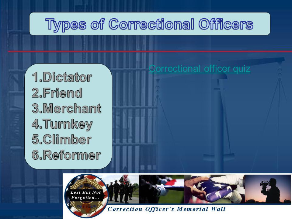 Profile of Correctional Personnel in Adult State and Local Correctional Facilities