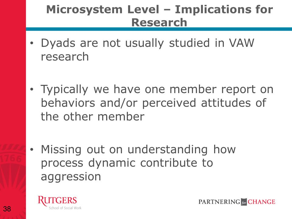Microsystem Level – Implications for Research Dyads are not usually studied in VAW research Typically we have one member report on behaviors and/or pe