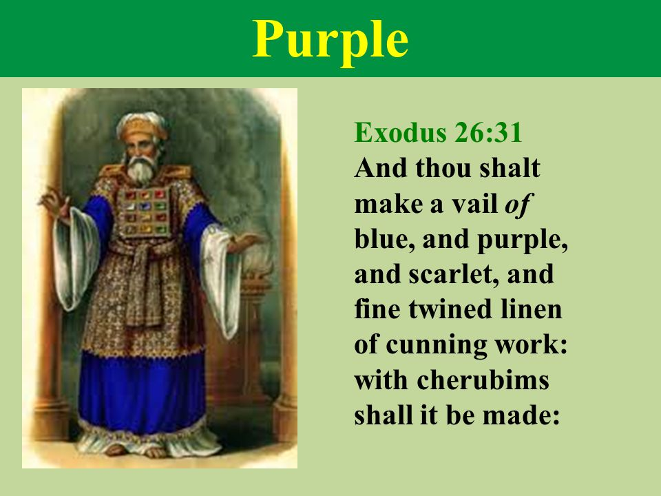 Purple Exodus 26:31 And thou shalt make a vail of blue, and purple, and scarlet, and fine twined linen of cunning work: with cherubims shall it be made: