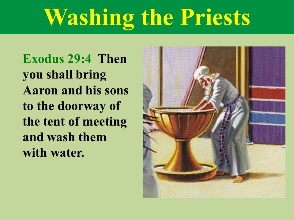 Washing the Priests Exodus 29:4 Then you shall bring Aaron and his sons to the doorway of the tent of meeting and wash them with water.
