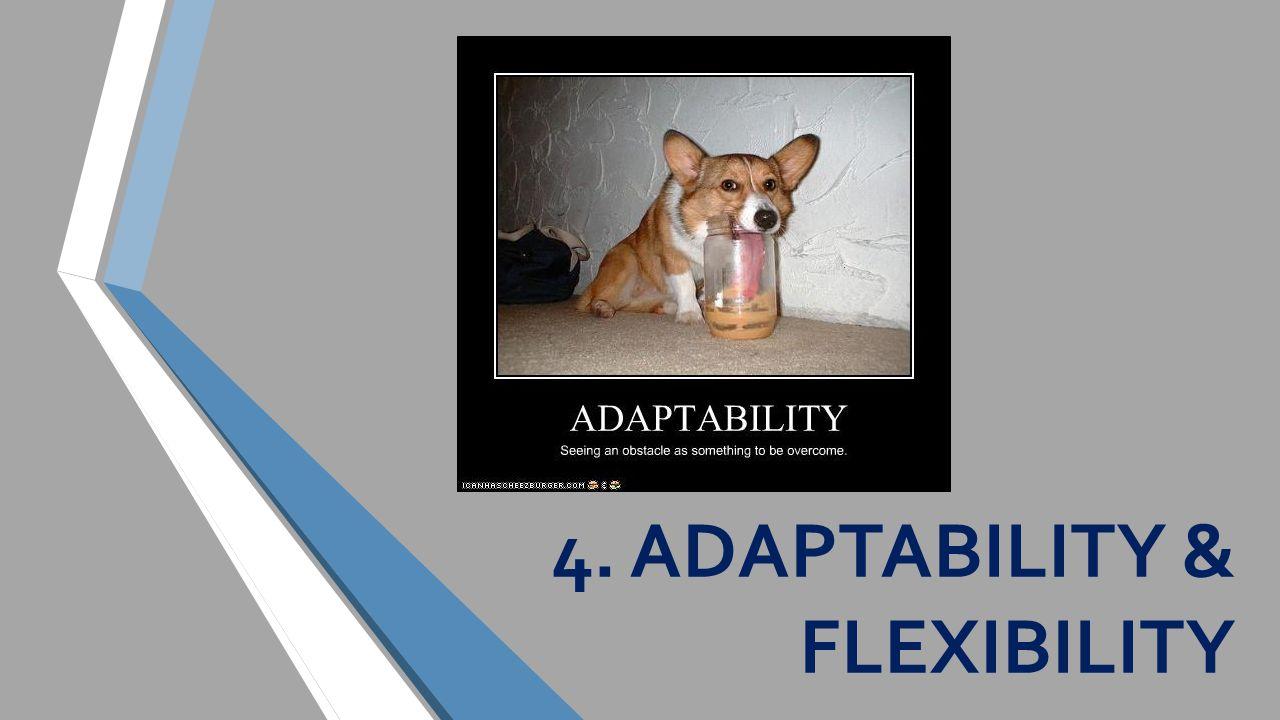 4. ADAPTABILITY & FLEXIBILITY