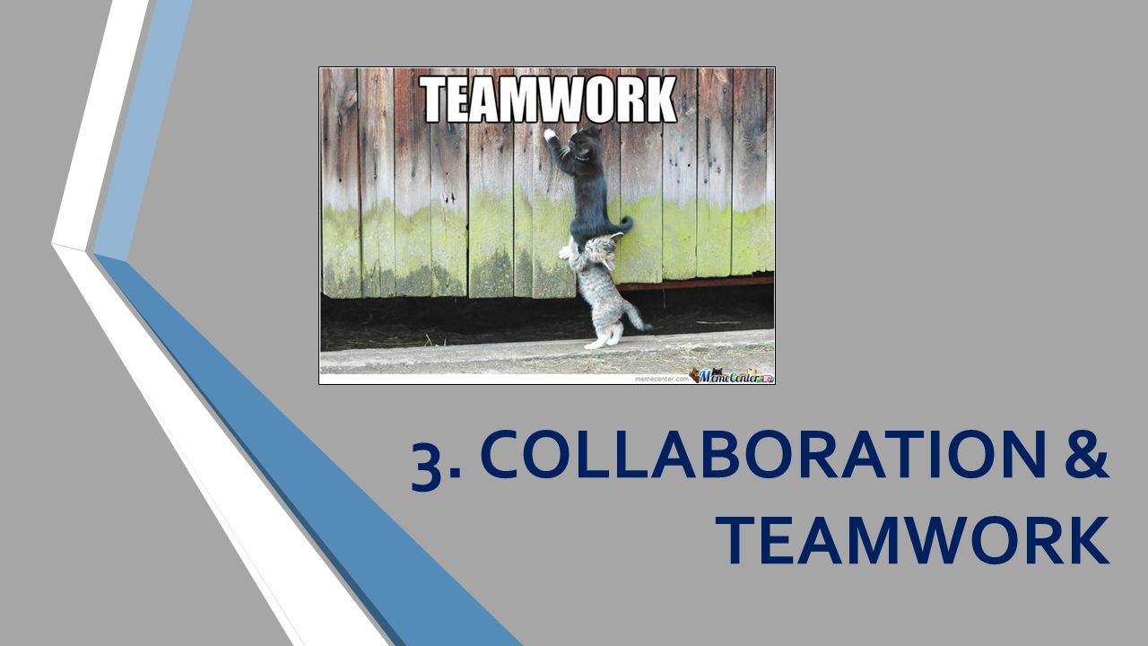 3. COLLABORATION & TEAMWORK