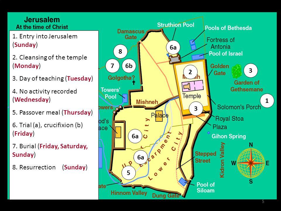The Olivet Discourse Mount of Olives 6