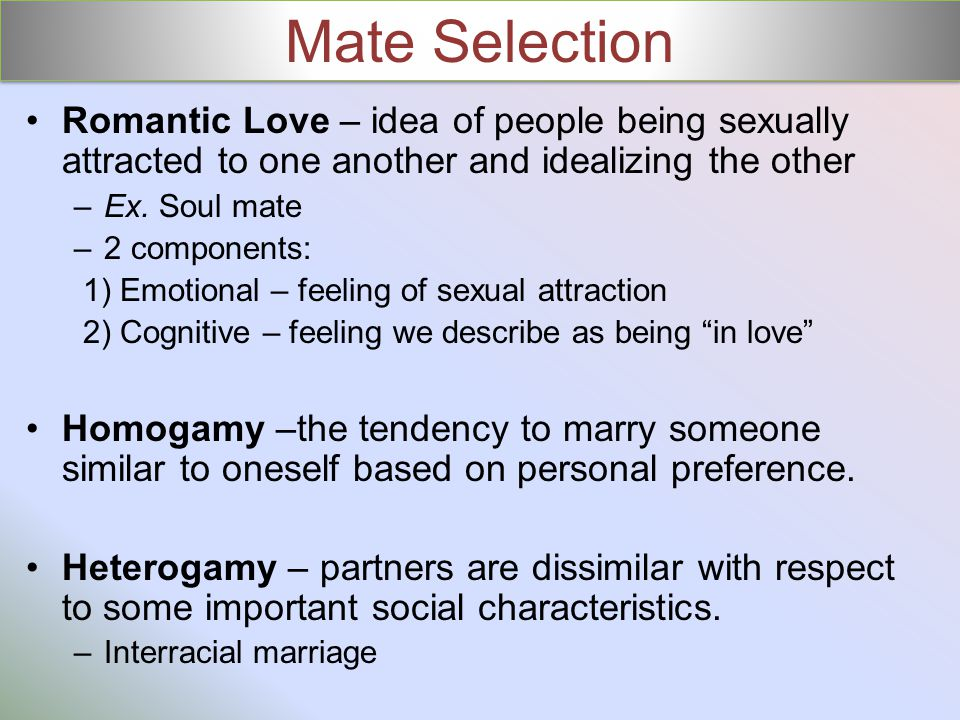 Mate Selection Romantic Love – idea of people being sexually attracted to one another and idealizing the other –Ex.