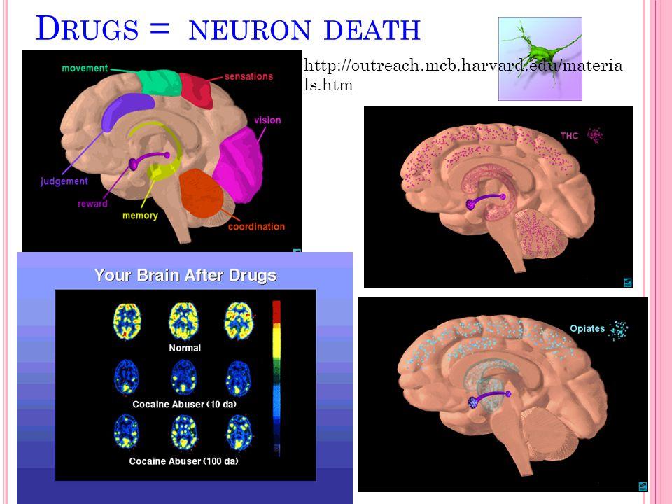 D RUGS = NEURON DEATH http://outreach.mcb.harvard.edu/materia ls.htm