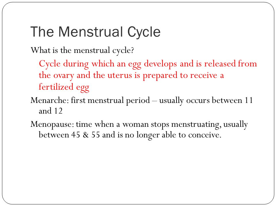 The Menstrual Cycle What is the menstrual cycle? Cycle during which an egg develops and is released from the ovary and the uterus is prepared to recei