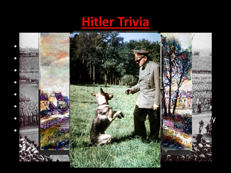 Born 1889 He was a vegetarian, and an animal lover Fought in WWI (1914-1918) Tried to be an artist 1920-1932: builds power of the Nazi Party 1923: tri