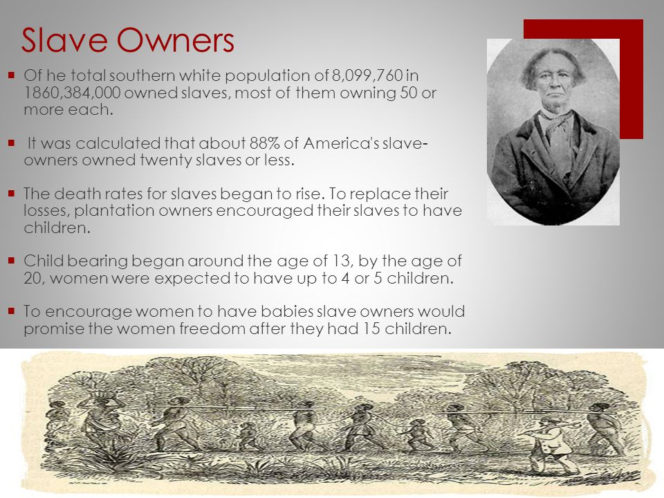 Slave Owners  Of he total southern white population of 8,099,760 in 1860,384,000 owned slaves, most of them owning 50 or more each.