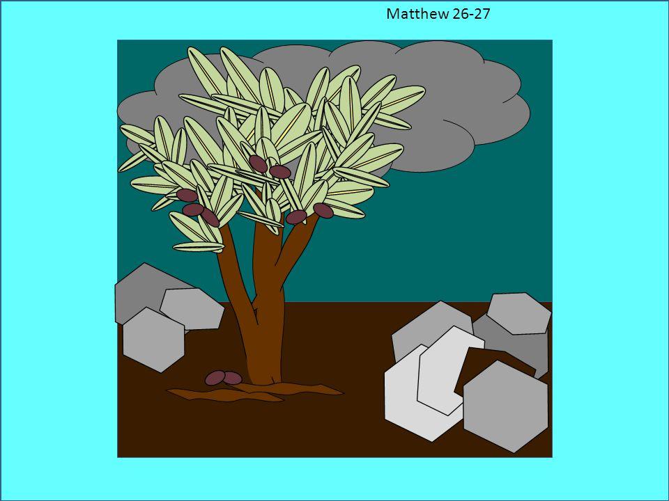 Matthew 26-27