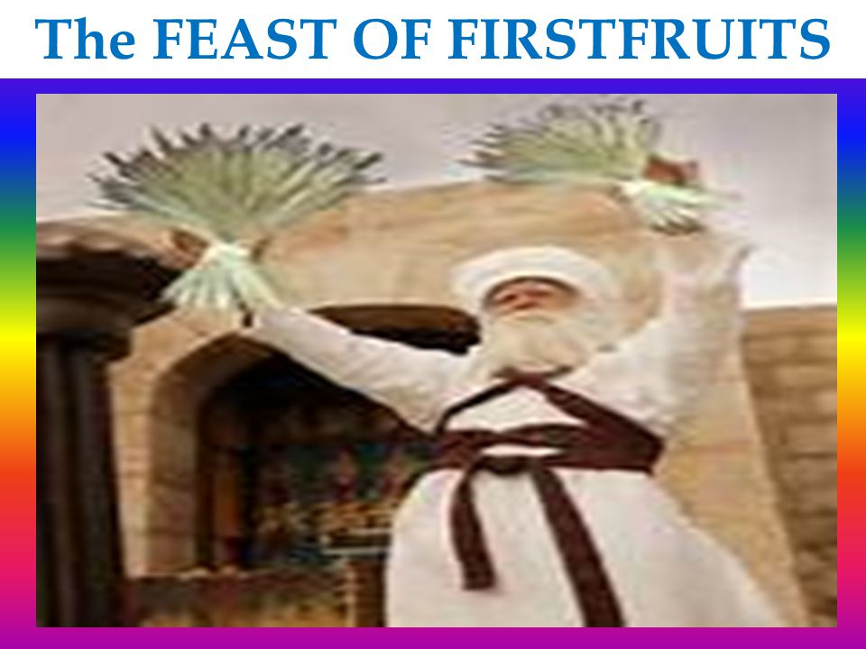 FEAST OF FIRSTFRUITS Lev 23:12 On the day you wave the sheaf, you must sacrifice as a burnt offering to the LORD a lamb a year old without defect, Lev 23:12 - Jesus the lamb of God experienced the fires of Calvary Joh 19:6 When the chief priests therefore and officers saw him, they cried out, saying, Crucify him, crucify him.