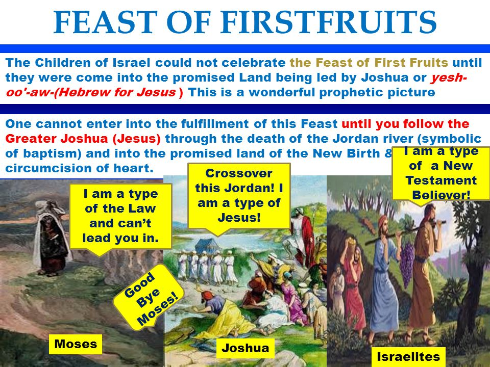 FEAST OF FIRSTFRUITS Lev 23:11 And he shall wave the sheaf before the LORD, to be accepted for you: on the morrow after the sabbath the priest shall wave it.