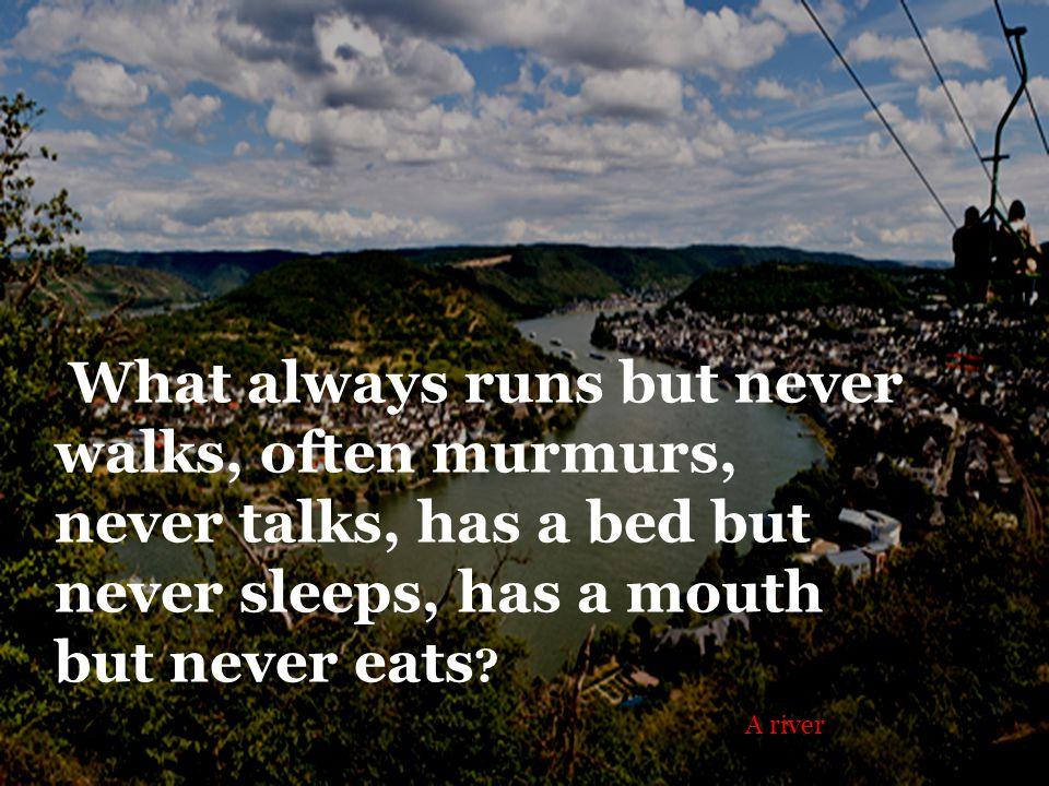 What always runs but never walks, often murmurs, never talks, has a bed but never sleeps, has a mouth but never eats .