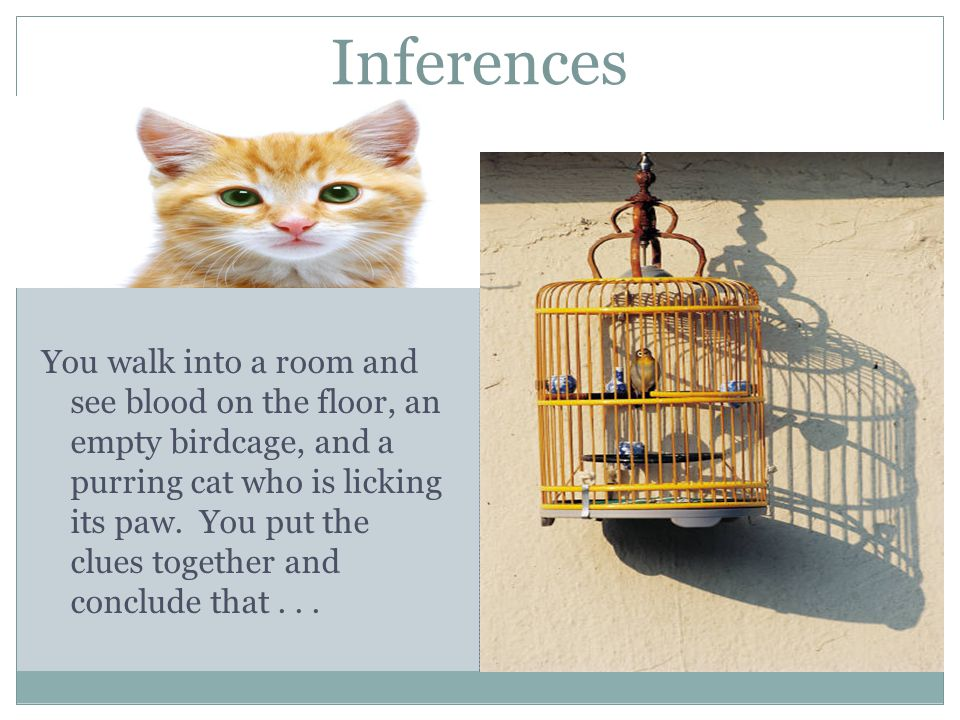 Inferences You walk into a room and see blood on the floor, an empty birdcage, and a purring cat who is licking its paw.