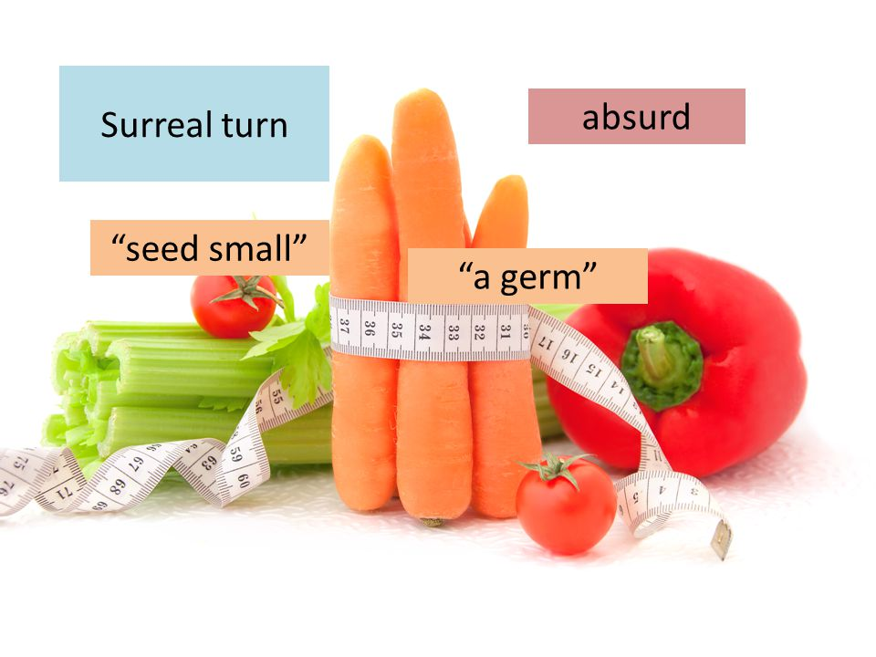 """Surreal turn """"seed small"""" absurd """"a germ"""""""