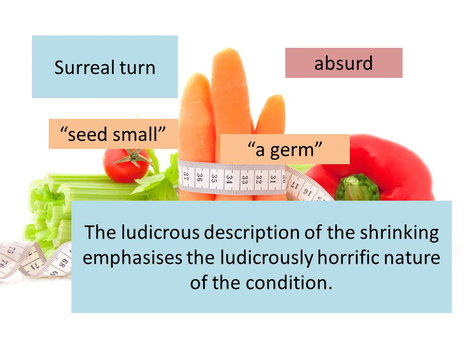 """Surreal turn """"seed small"""" The ludicrous description of the shrinking emphasises the ludicrously horrific nature of the condition. absurd """"a germ"""""""