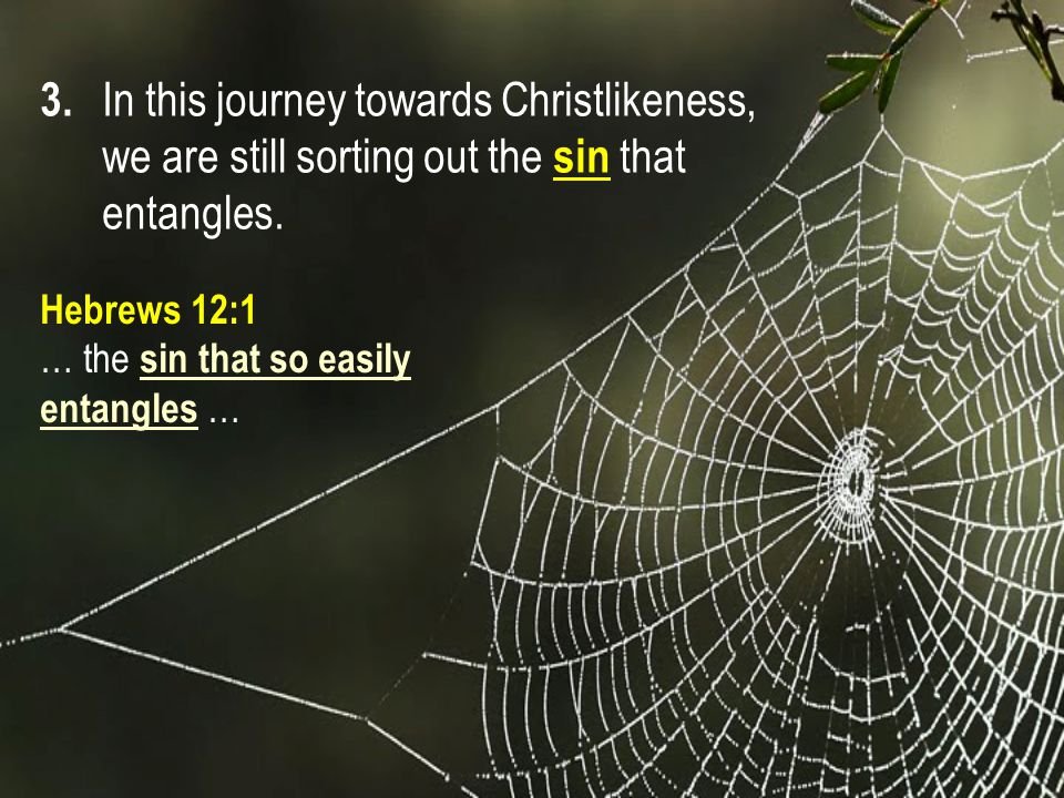 3. In this journey towards Christlikeness, we are still sorting out the sin that entangles.