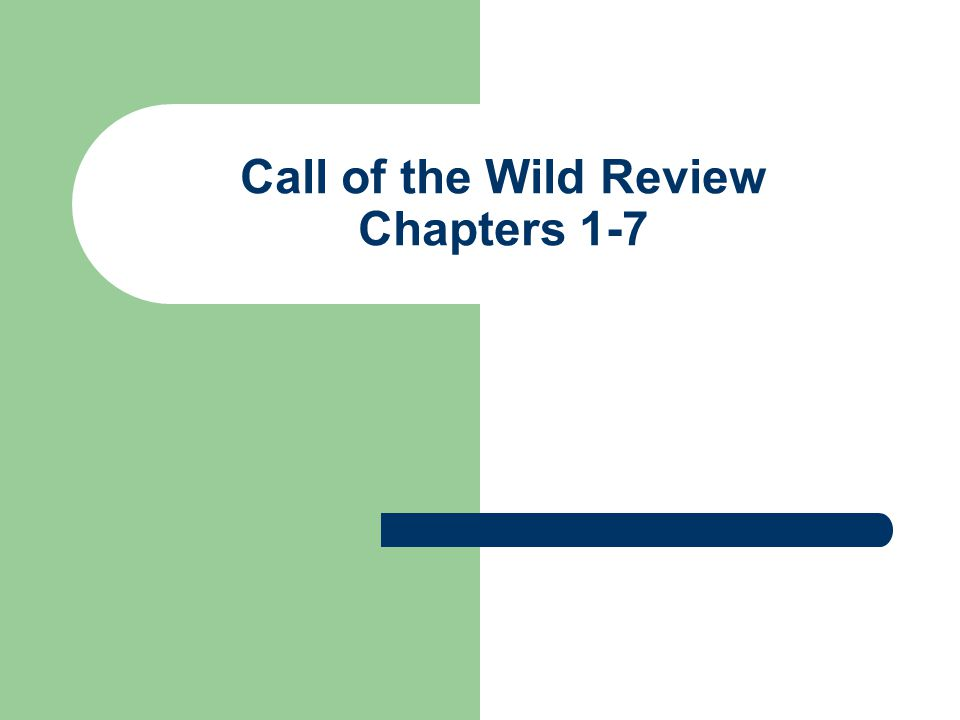 Call of the Wild Review Chapters 1-7
