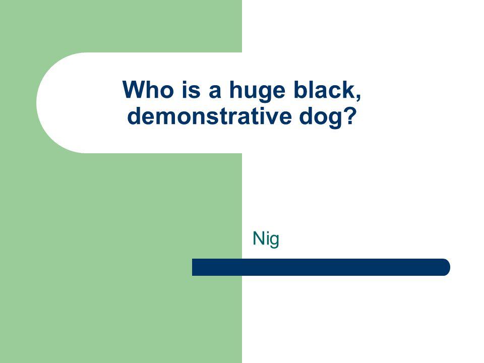 Who is a huge black, demonstrative dog Nig