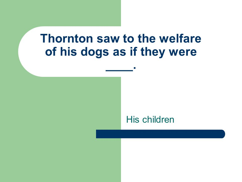 Thornton saw to the welfare of his dogs as if they were ____. His children