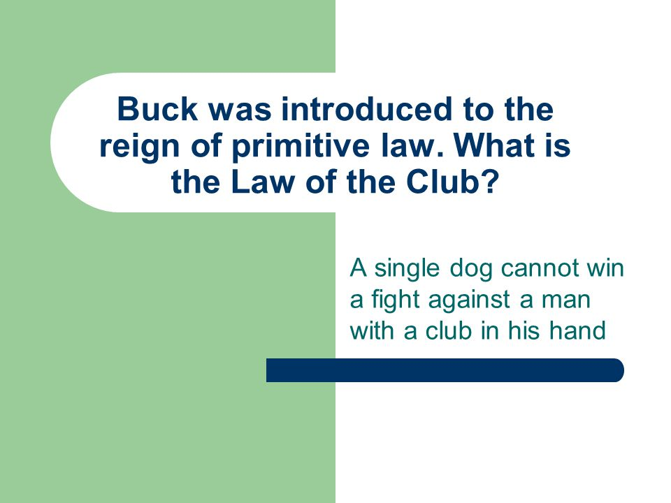 Buck was introduced to the reign of primitive law.