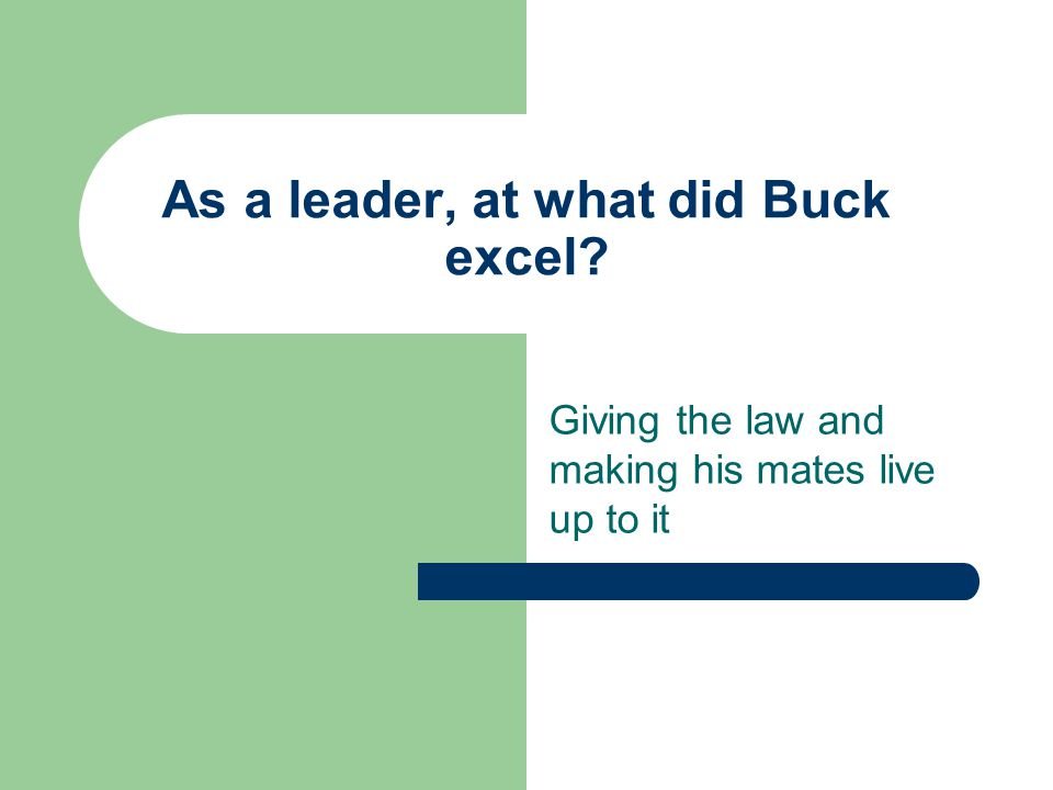 As a leader, at what did Buck excel? Giving the law and making his mates live up to it