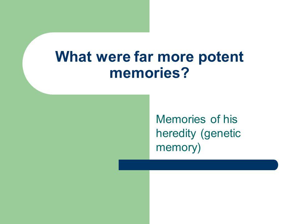 What were far more potent memories Memories of his heredity (genetic memory)