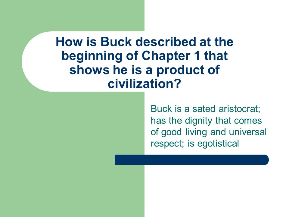 Why does Buck hate Spitz after Curly's death? Spitz laughed at it