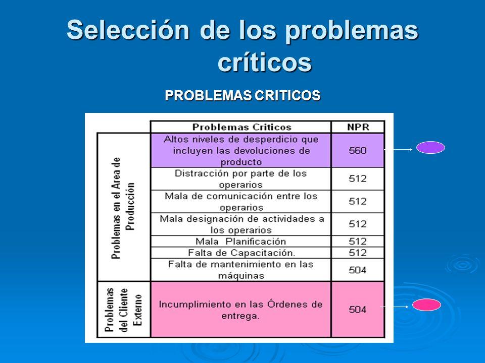 Selección de los problemas críticos PROBLEMAS CRITICOS