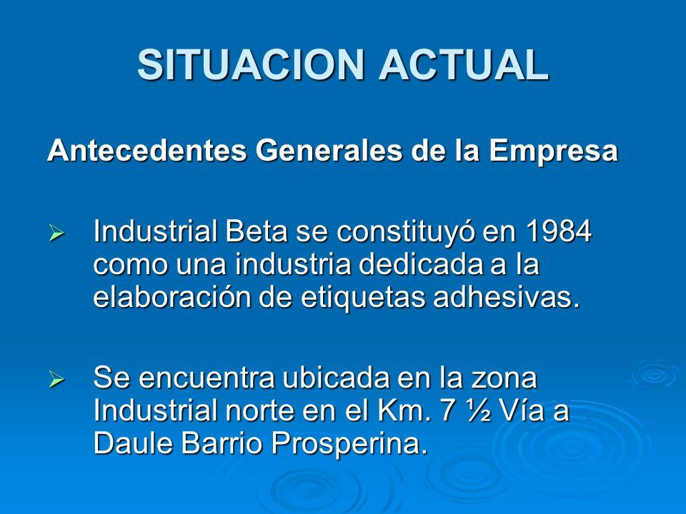 SITUACION ACTUAL Antecedentes Generales de la Empresa  Industrial Beta se constituyó en 1984 como una industria dedicada a la elaboración de etiqueta
