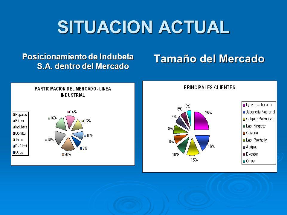 SITUACION ACTUAL Posicionamiento de Indubeta S.A. dentro del Mercado Tamaño del Mercado