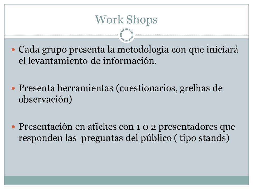 Work Shops Cada grupo presenta la metodología con que iniciará el levantamiento de información.