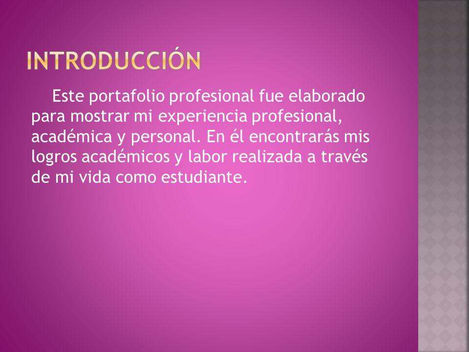 Este portafolio profesional fue elaborado para mostrar mi experiencia profesional, académica y personal.
