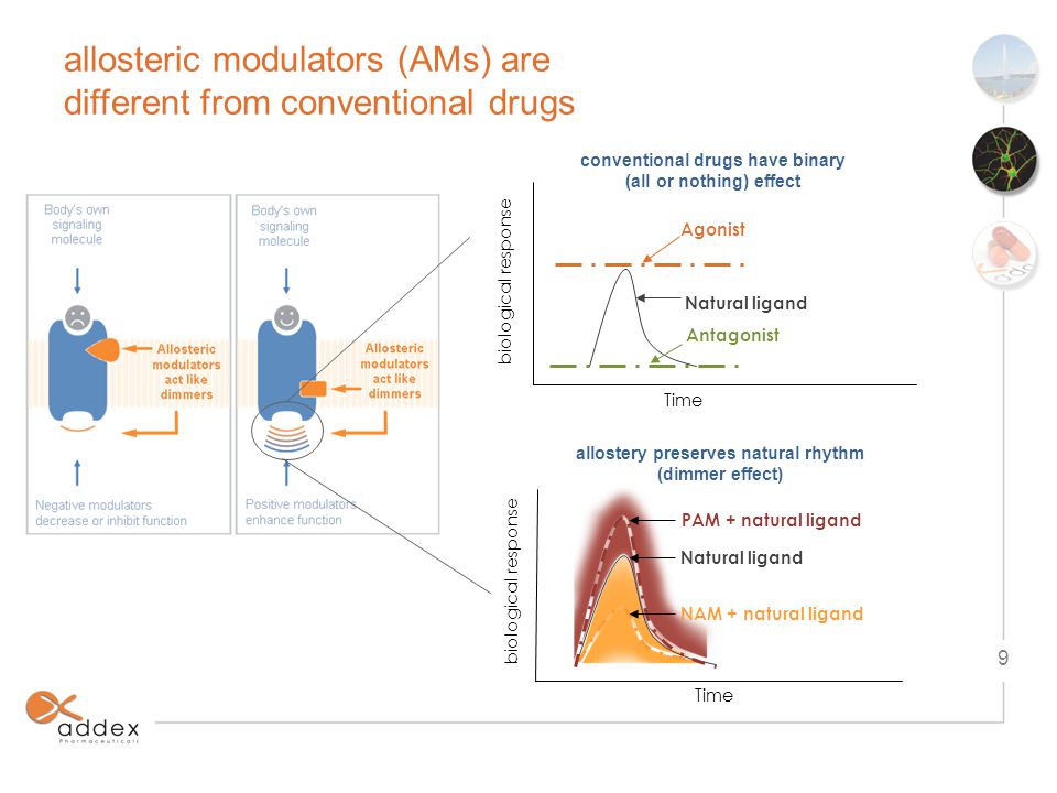 allostery bridges the divide, offers best of both worlds conventional small molecule drugs biological drugs allosteric modulators injectable immunogenicity & safety issues cannot cross BBB high COGs only about 350 targets addressed to date* achieving selectivity is challenging low probability of success (5-7%) *Overington et al.